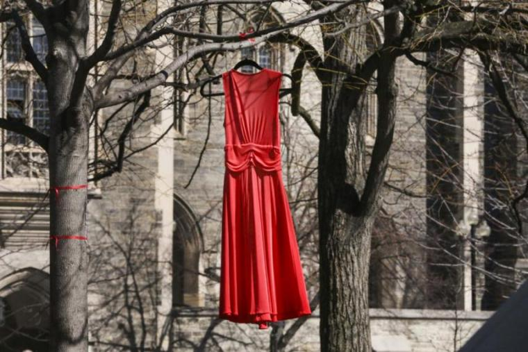 A red dress hangs in a tree at the University of Toronto.